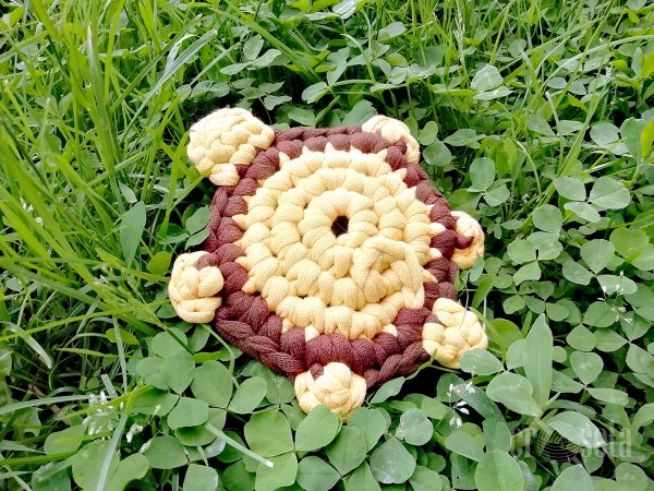 Broscuță țestoasă croșetată