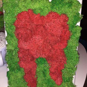 Tablou cu licheni - DINTE