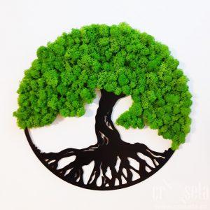 Tablou rotund cu licheni verzi - COPACUL VIEȚII