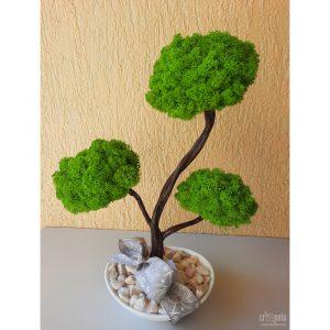 Bonsai cu licheni verzi (3 ramuri), vas oval cu pietricele decorative